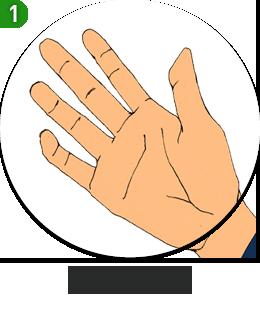 손꼴의 세계