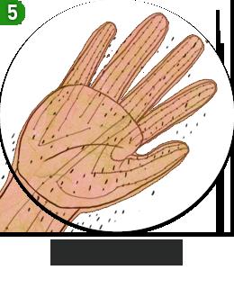 손문양의 의미